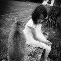 Little Girl And The Cat